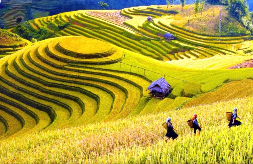 du lịch Hà Giang - saomaitourist