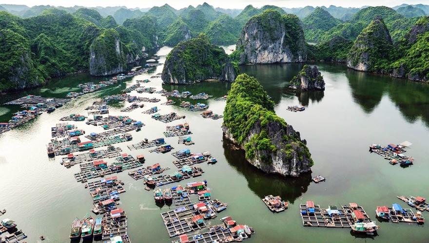 Tour thăm vịnh Lan Hạ 1 ngày ( Tour Thường)