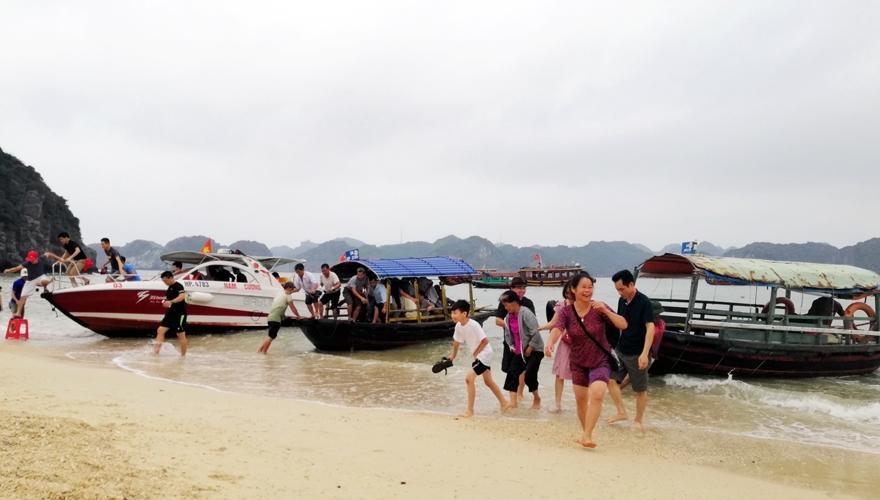 saomaitourist - du lịch đảo khỉ